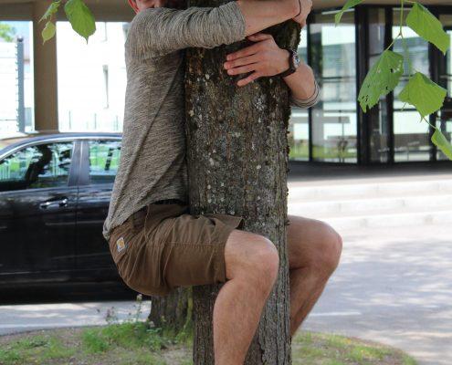 Kulter_Baum