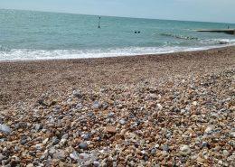 Suette_Brighton2017 (25)