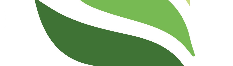 logo-wellax