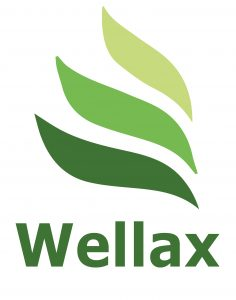 logo-wellax